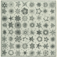 Something sparkly © Ramona_Taterra_2017