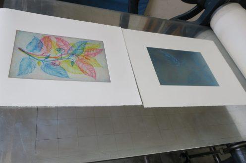 Blau gedruckt